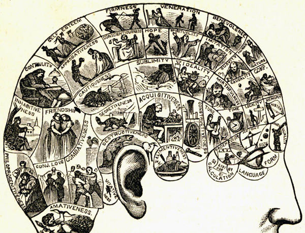 "Detail from Figure 22, ""Symbolical Head Illustrating the Natural Language of the Faculties,"" from Samuel Wells's ""How to Read Character: A New Illustrated Handbook of Phrenology and Physiognomy,"" 1891."
