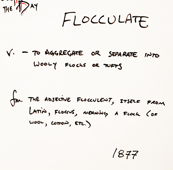 Flocculate
