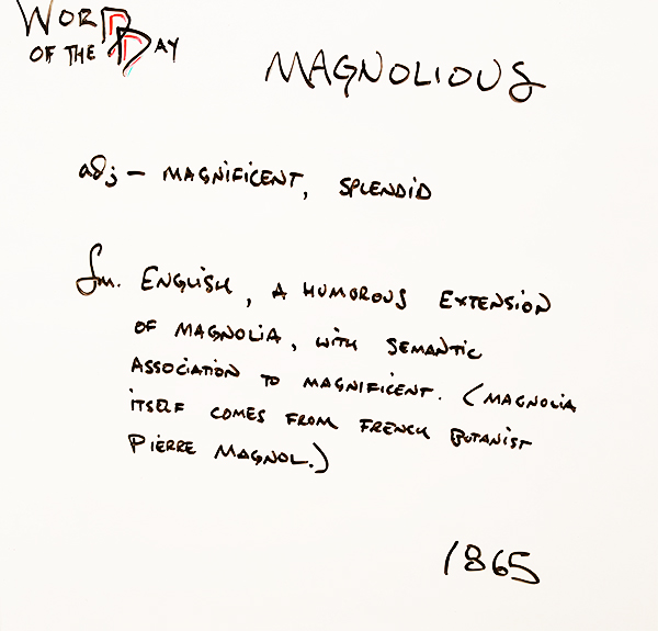 Magnolious